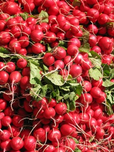 The abundance of the most beautifying foods in the world come right from nature!